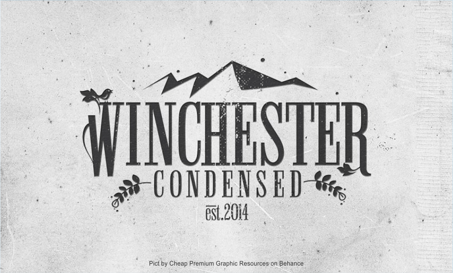 """Winchester Condensed Font"" Pict by Cheap Premium Graphic Resources on Behance"